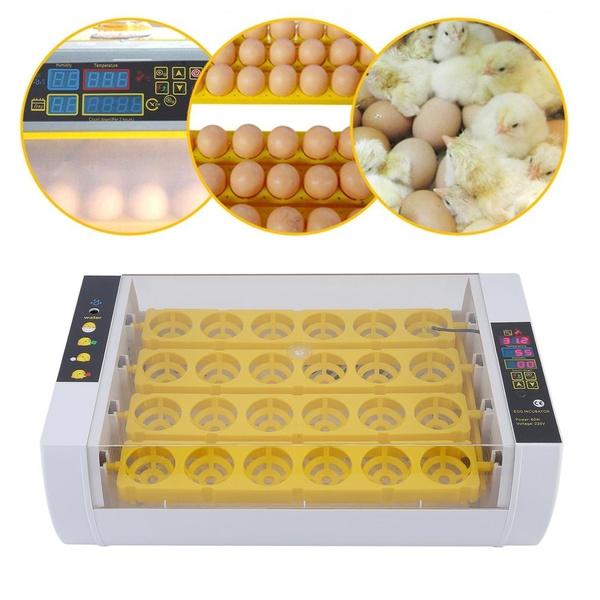 temperaturecontrol, eggmachine, eggpoacher, minieggincubator