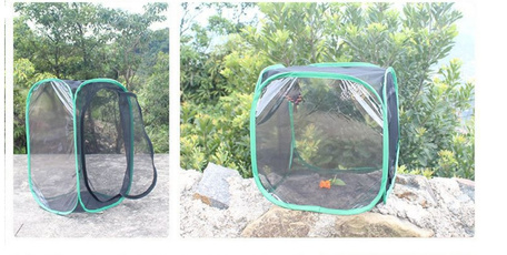 butterfly, insectbutterflymeshcage, foldableinsectcage, insectnet