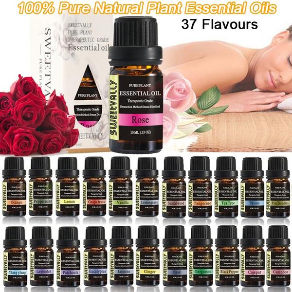 Plants, carairfreshener, home fragrance, airfreshener