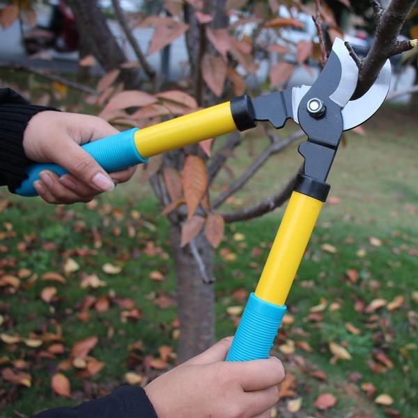 Stainless Steel Scissors, planting, Gardening, Garden