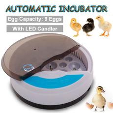 poultryhatcher, duckeggsincubator, Capacity, birdeggincubator