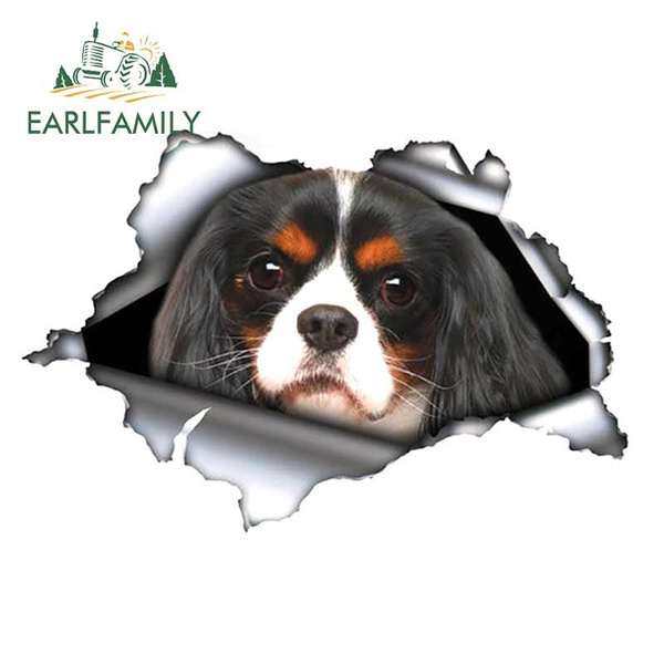 3dcarstickercarstyling, Car Sticker, King, Pets