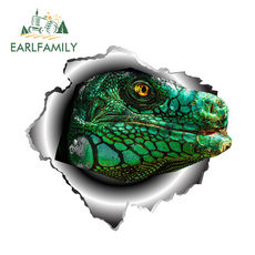 iguanareptilelizardvinyldecal, Car Sticker, 3dcardecal, iguanareptilelizardcardecal