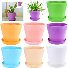 homegardendecoration, Mini, Plants, plantofficeflowerpot