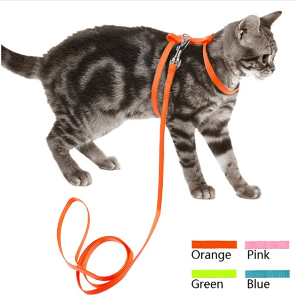 Outdoor, nylonharnessleash, forcatsdog, Pets