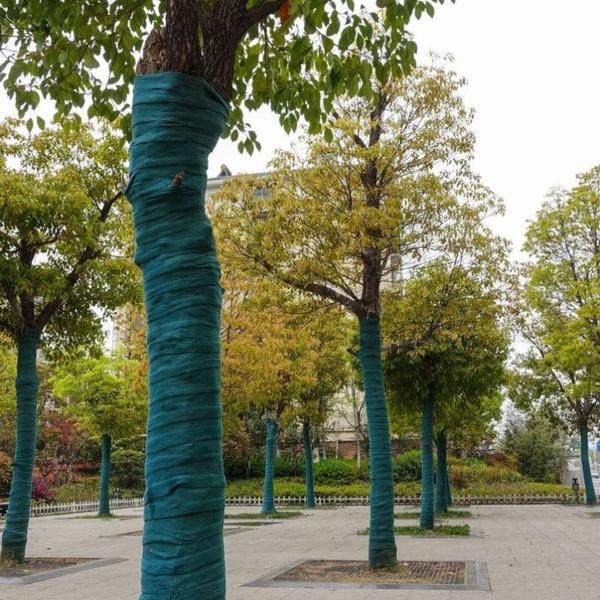 plantprotection, plantsbandage, treewrap, protectorwrap