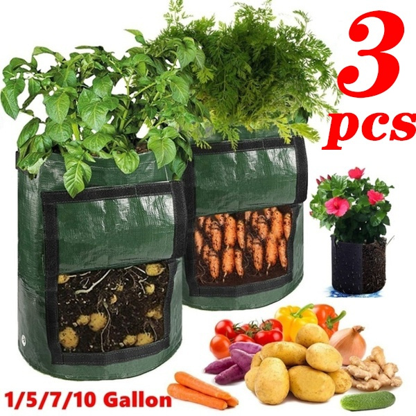 Plants, Flowers, potatobag, vegetabletool