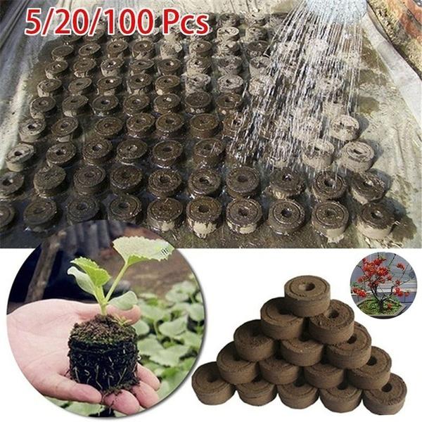 flowerplantsseedling, Garden, Gardening Tools, Gardening Supplies