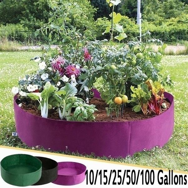 plantgrowbag, flowersampplant, Flowers, Garden