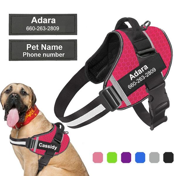 Vest, Outdoor, dogharnes, Pets