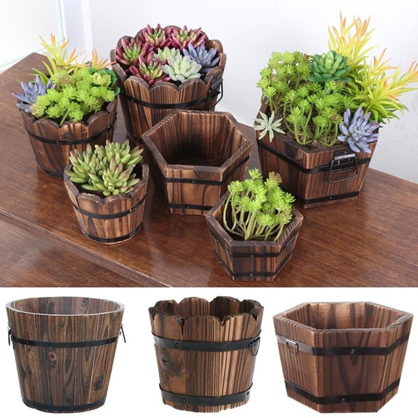 Plants, Outdoor, Garden, potswindowboxe
