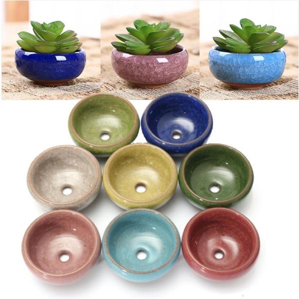 succulent, Plants, Ceramic, fleshyflowerpot