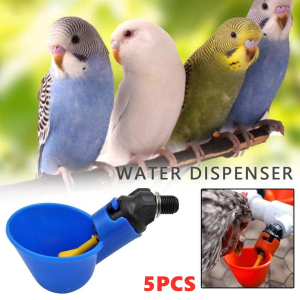 fowldrinker, automaticpoultrywater, chickenwaterer, chickendrinker