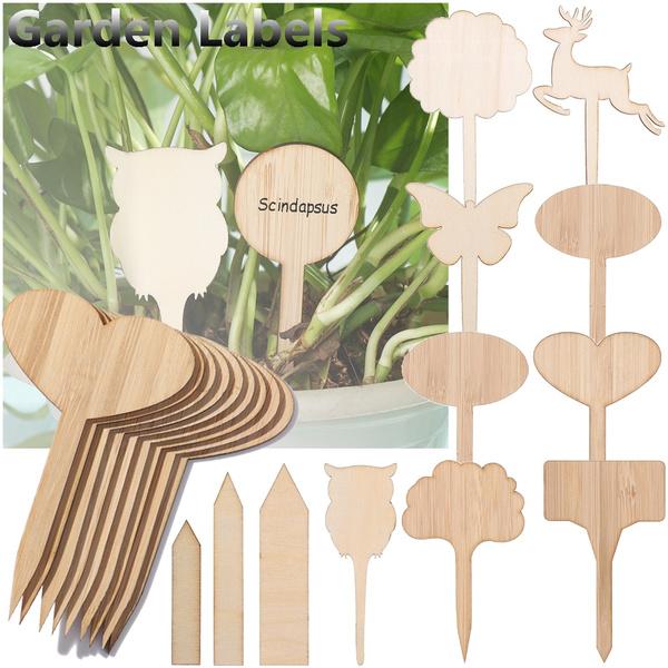 Bonsai, Plants, multishapelabel, Garden