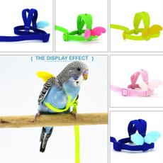 parrotleashrope, parrotharne, parrotharnessandleash, Flying