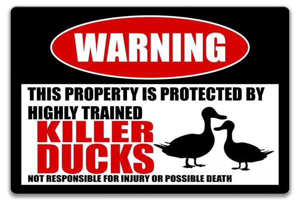 duckssign, funnyducksign, Decor, duckcoopsign