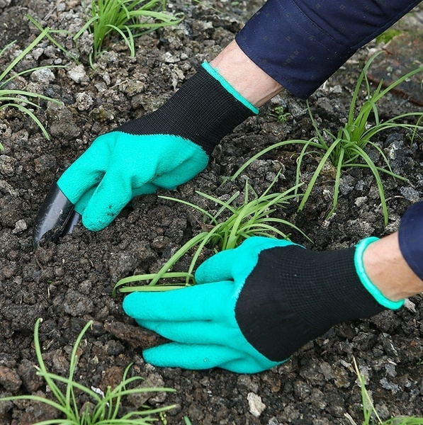 Plants, Garden, gardenglovescostco, gardeningprotectiveglove