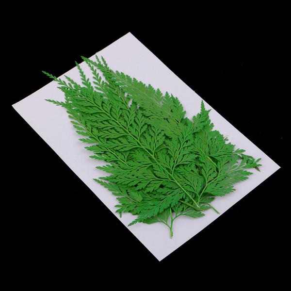Craft Supplies, driedbotanicalspotpourri, Flowers, diyembellishment