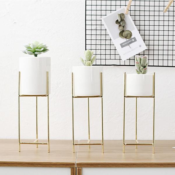 flowerpotstand, succulent, Plants, Gardening