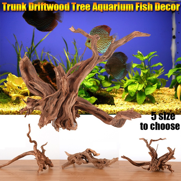 Plants, treetrunk, Tank, driftwood