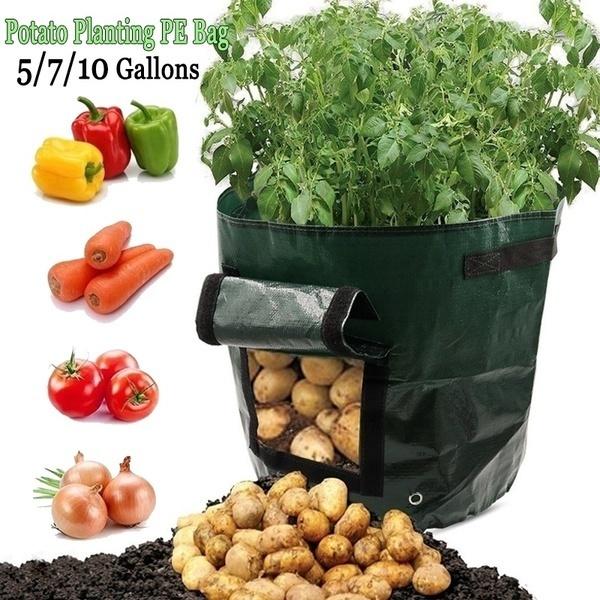 Plants, Gardening, Garden, Bags