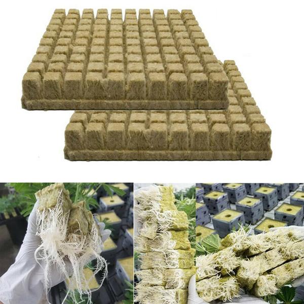 Plants, growingmedia, hydroponic, Gardening Supplies