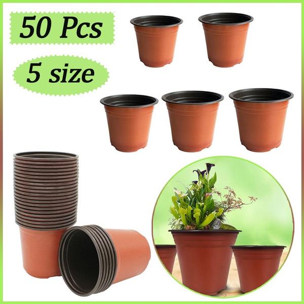 Plants, seedlingspot, Garden, plantspot
