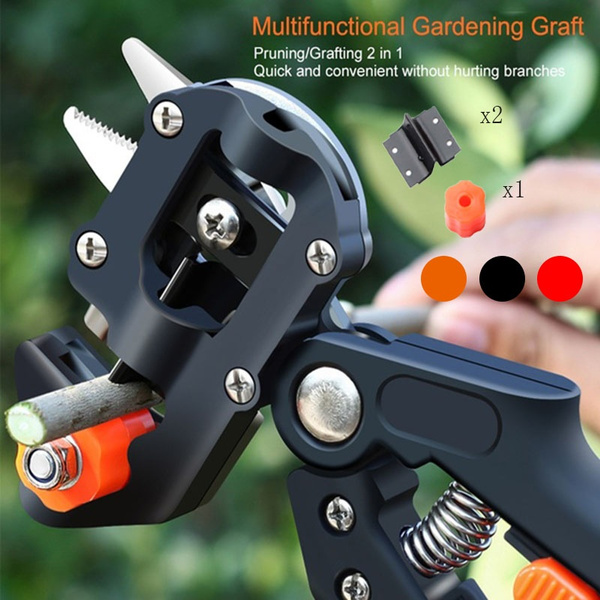 Garden, Gardening Tools, fruittreeshear, Tree