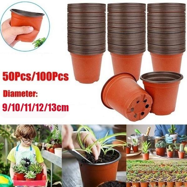 Outdoor, succulentsflowerpot, Garden, plantspot