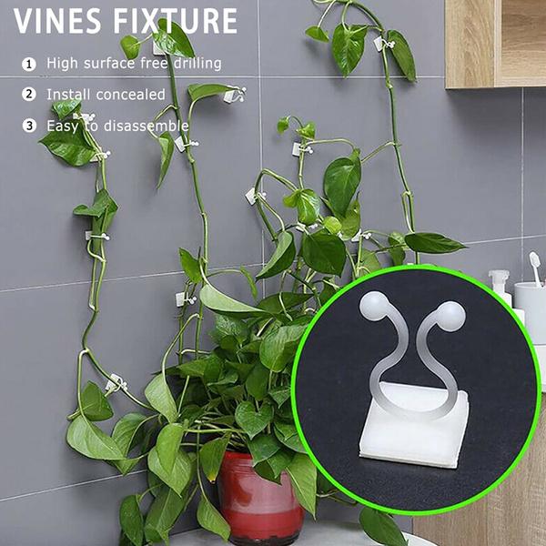 Plants, stickyhook, Clip, Hooks