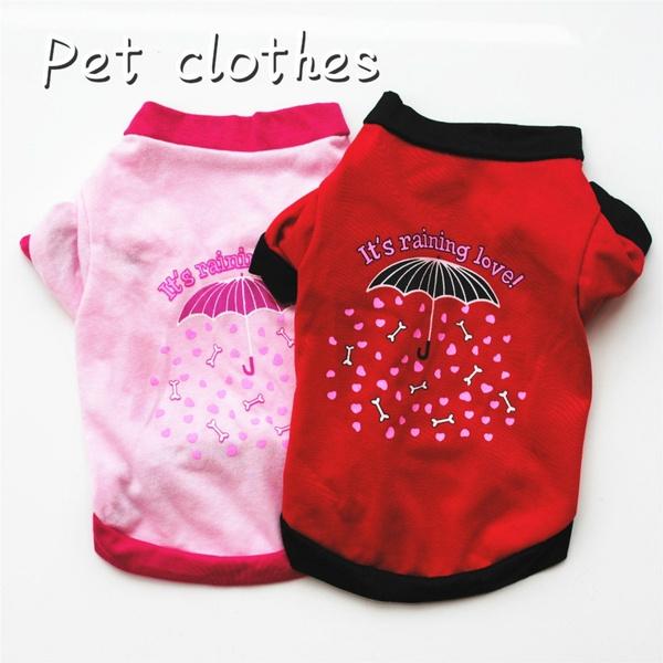 pink, Summer, puppy, Love