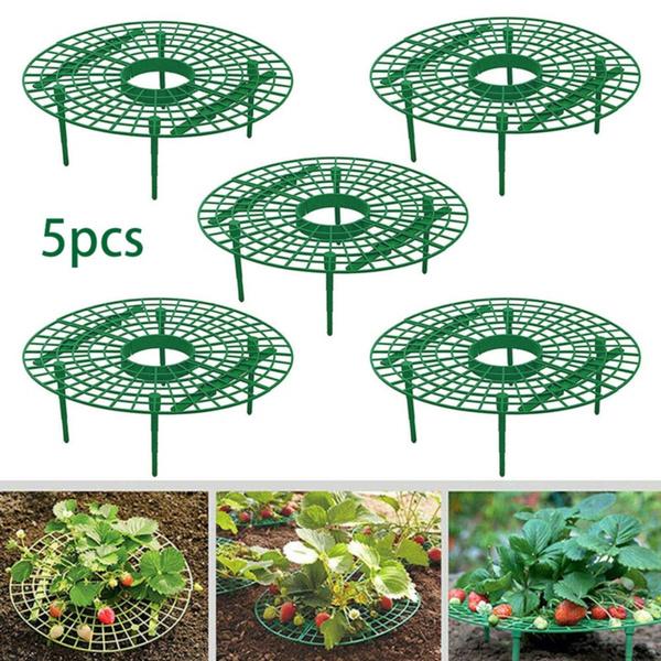 planting, Plants, Flowers, Gardening
