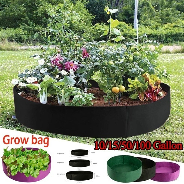 Box, flowersampplant, Flowers, Capacity