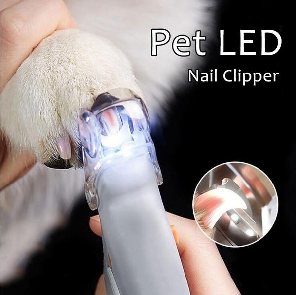led, Beauty, pawtrimmer, Pets