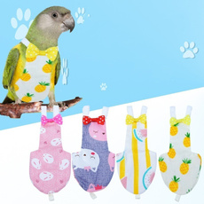 macaw, Gifts, Pets, Suits