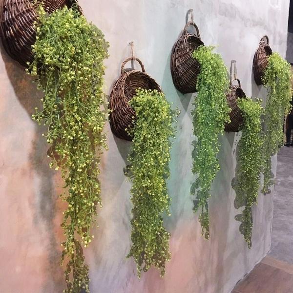 Fashion, 115cm, basketorchid, elongatedplant