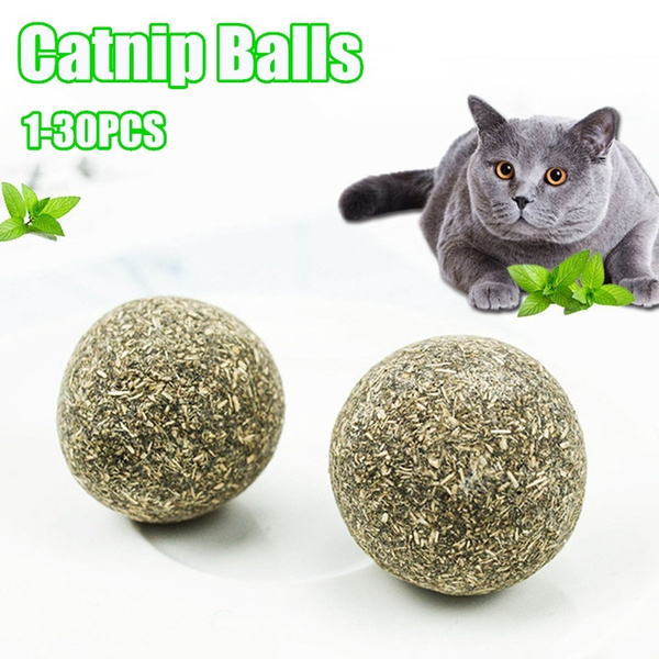 cattoothpaste, temptationscattreat, cattreat, catnipcattoy