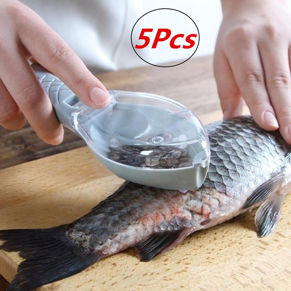Scales, fishscalecleaner, fishcleaning, fish