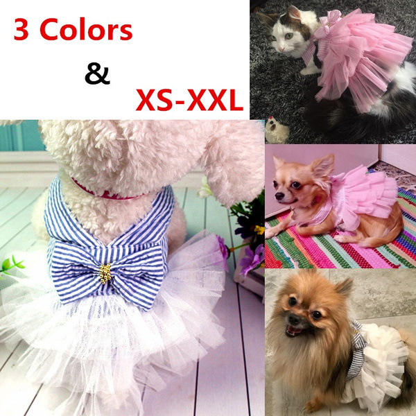 Fashion, Pets, Coat, Dress