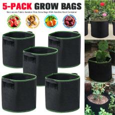 Plants, Garden, potato, Gardening Supplies