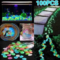 decoration, Plants, Home Decor, fluorescentstone