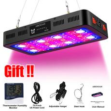 2400w, Monitors, Chain, lights