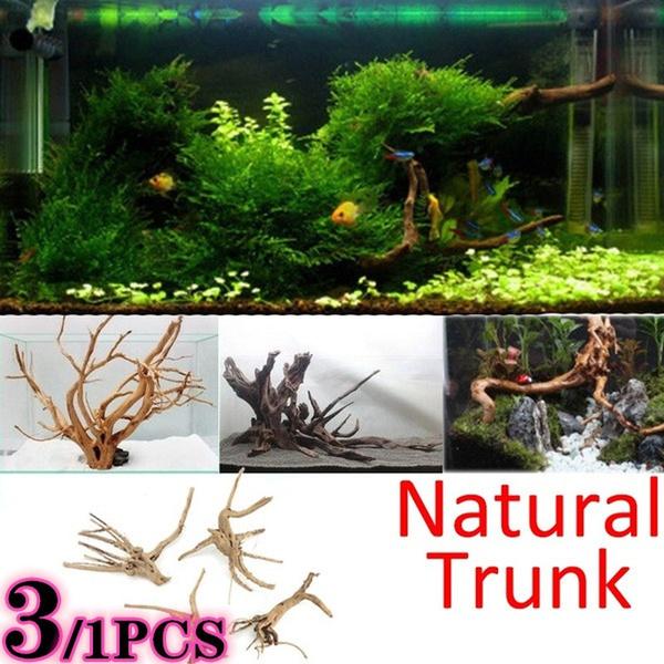 aquariumdriftwood, Plants, Tank, Tree