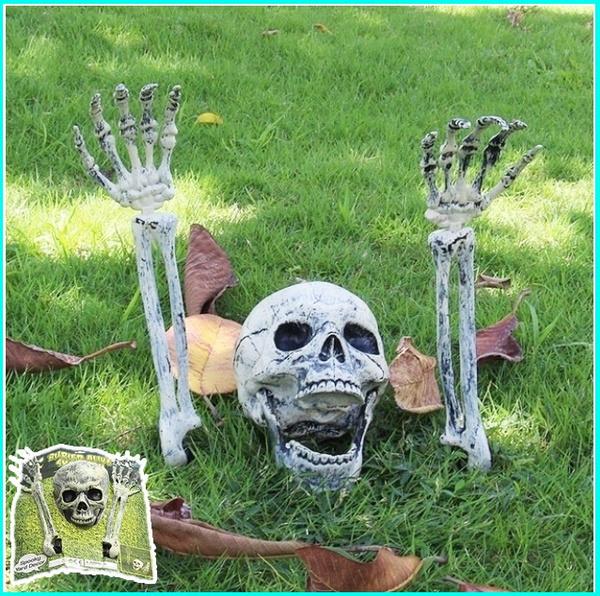 ghost, Halloween Decorations, Head, Skeleton