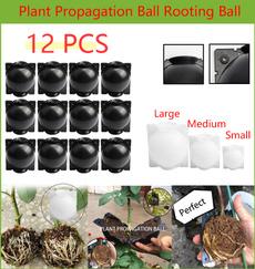 case, Box, roseplantingtool, plantpropagationball
