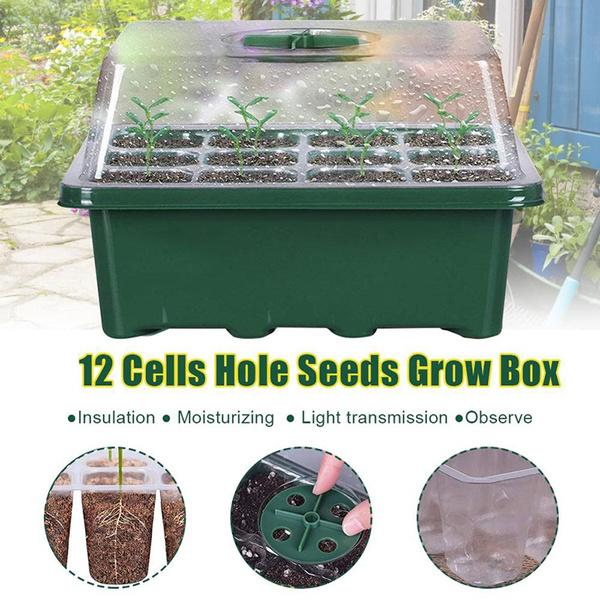 gardenplanting, Box, flowerpot, Garden