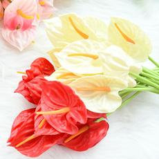 callalily, Home Decor, Bouquet, Wedding