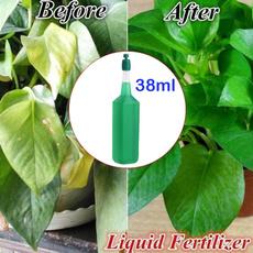 Plants, Gardening, effective, seedling