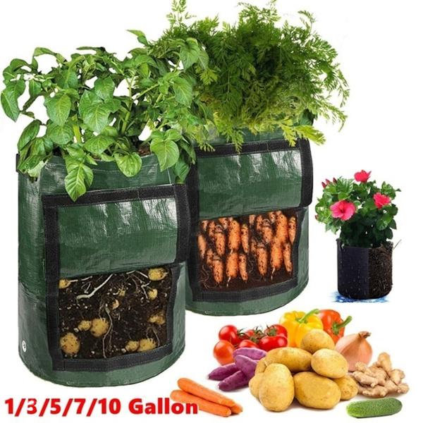 vegetabletool, Flowers, Garden, potatobag