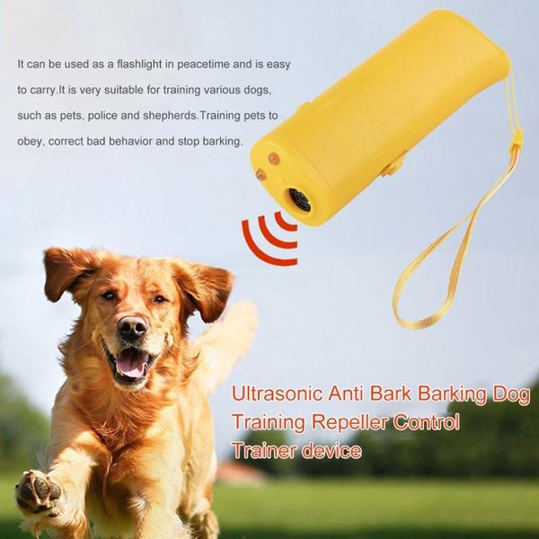trainer, Training, led, barking